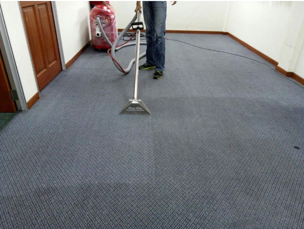 Dry Carpet Cleaning vs. Steal Cleaning